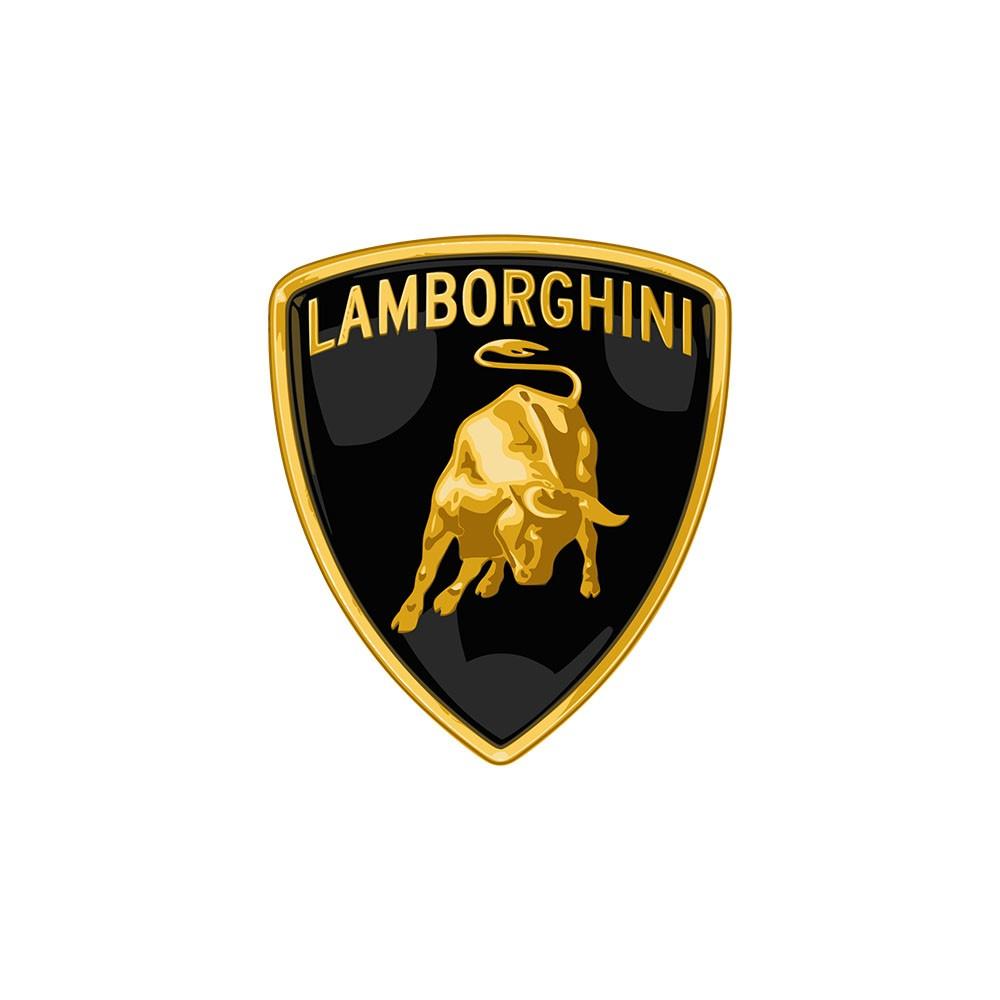 לוגו למבורגיני- חלקי חילוף שידרוגים
