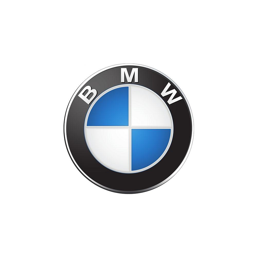 לוגו BMW - חלקי חילוף שידרוגים
